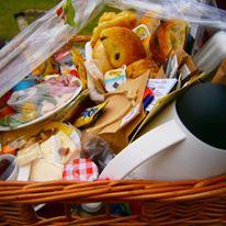 picknick oevers van de schelde schellebelle